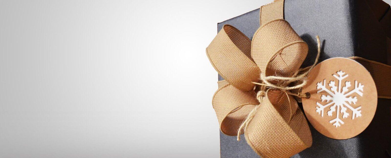 Spikeball Set als Geschenk