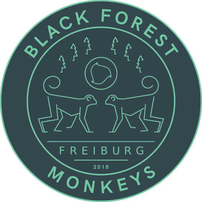 Spikeball Freiburg