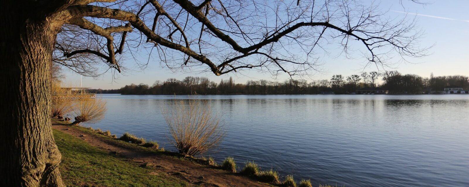 Maschsee in Hannover mit Wiesen zum Spiken