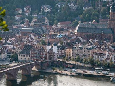 Spikeball Set kaufen in Heidelberg